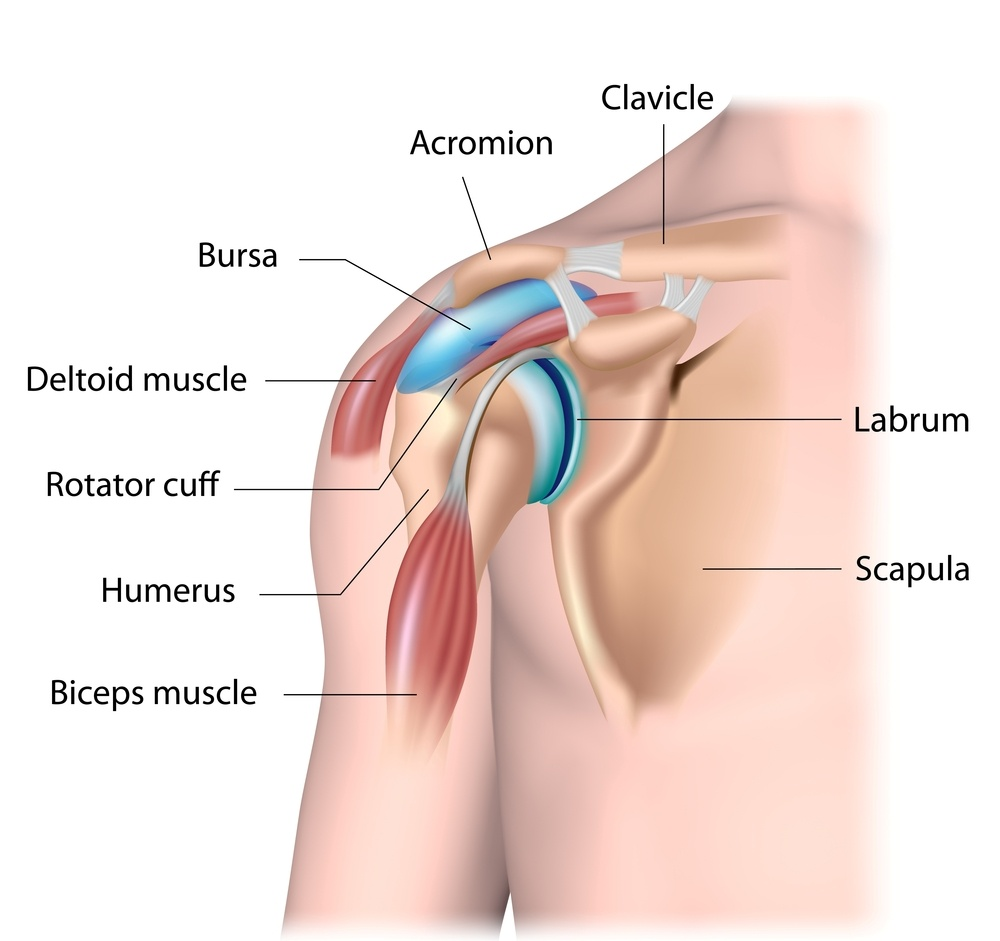 Bursitis: What Is It, Causes, and Areas of the Body Affected