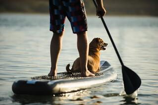 joint-pain-paddleboarding